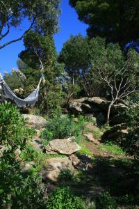 Jardin Méditerranéen et hamac