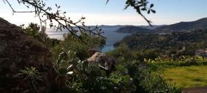 Vue sur la baie du Rayol